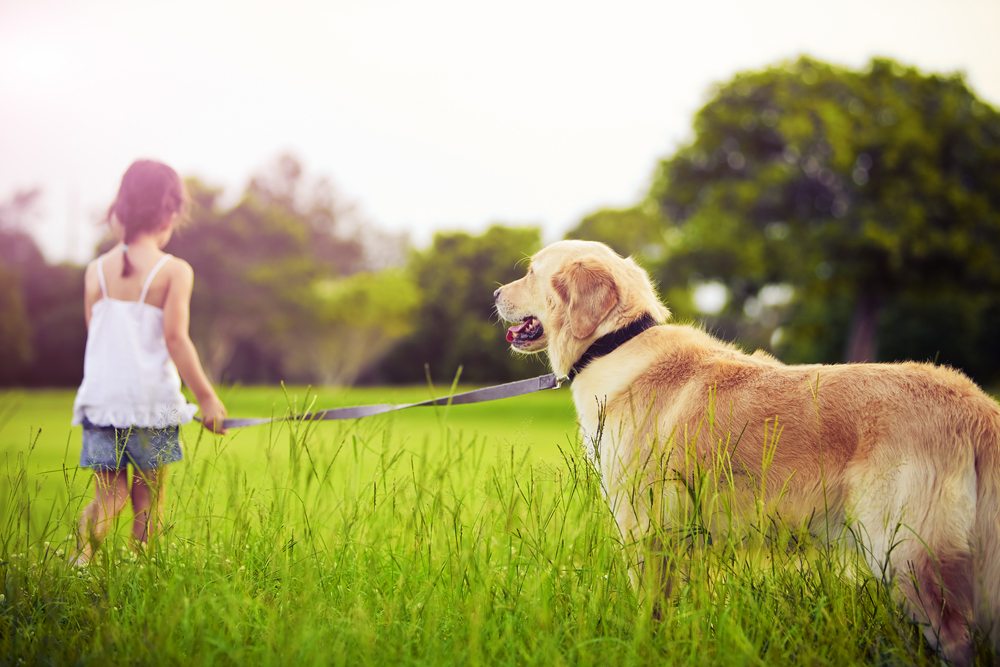 young girl holding her dog on a leash